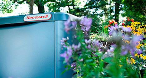 Honeywell Generator beside flowers